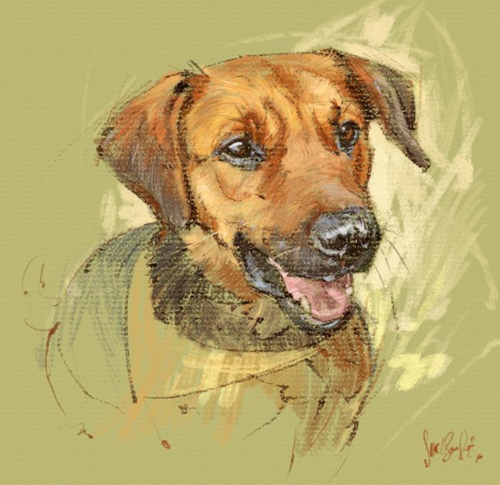 doggy-pastel